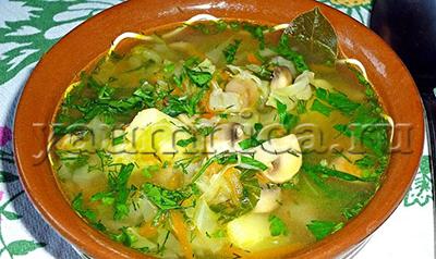 рецепт куриного супа с грибами