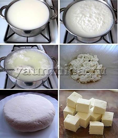 как сделать сыр панир в домашних условиях